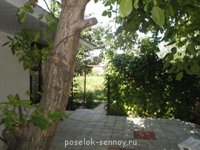 дворик дом 2 - DSC03394.JPG